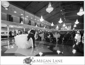 megan_lane_photography_josh_and_brittani_cathedral_helena_montana_wedding_0126b